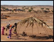 Western Sahara: A Book Review